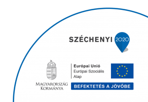 Széchenyi 2020 pályázati leírás